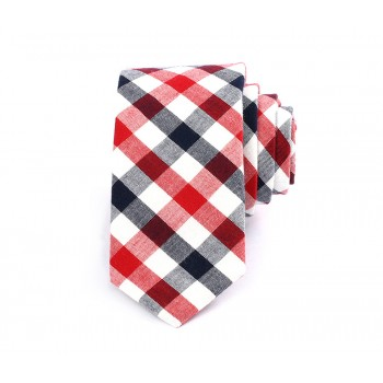 Black & Red Gingham Tie
